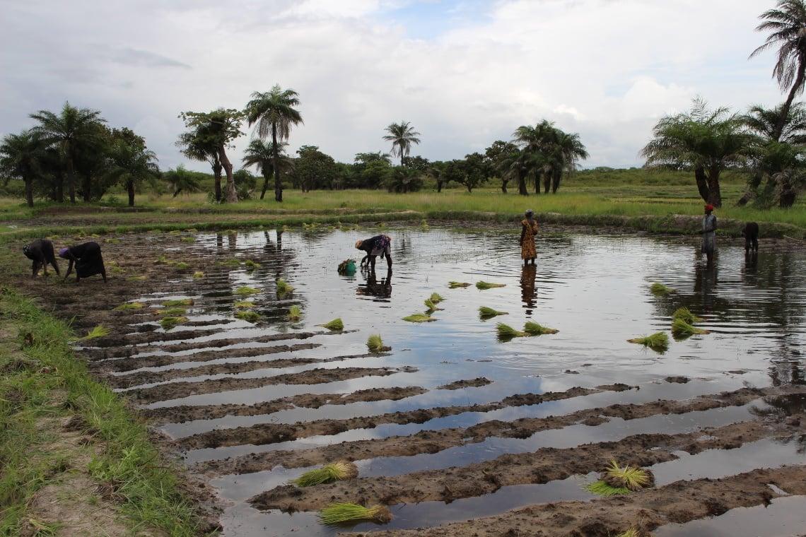 Guinea Bissau herstelwerkzaamheden